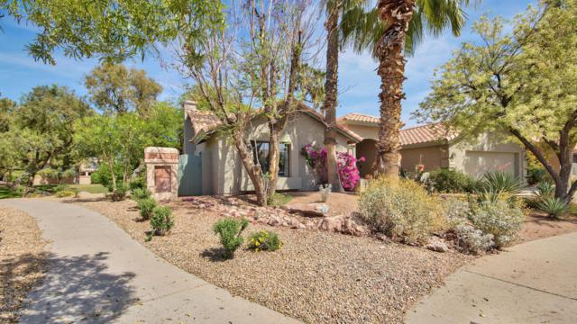 9831 S Forest Avenue, Tempe, AZ 85284 (MLS #5756194) :: Occasio Realty