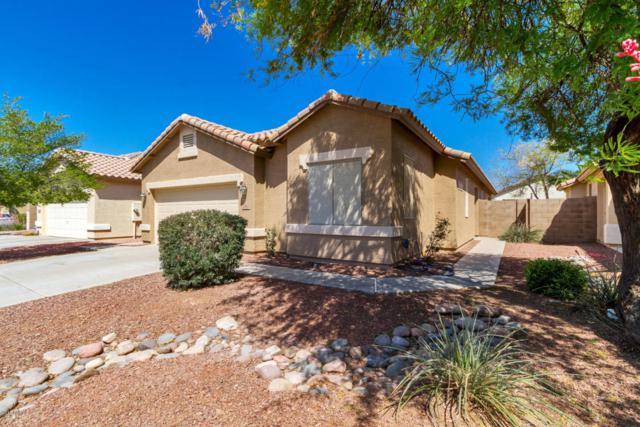 12612 W Bird Lane, Litchfield Park, AZ 85340 (MLS #5756206) :: Devor Real Estate Associates