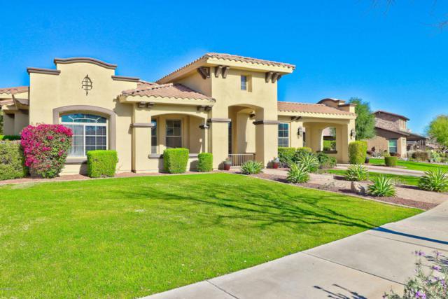 3886 N Evergreen Street, Buckeye, AZ 85396 (MLS #5756213) :: Devor Real Estate Associates