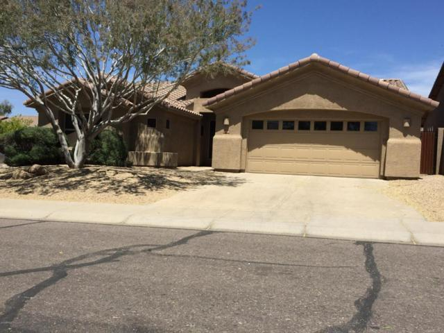 4404 E Lariat Lane, Phoenix, AZ 85050 (MLS #5756251) :: The Pete Dijkstra Team