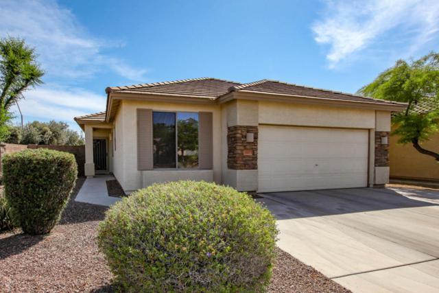 16933 W Young Street, Surprise, AZ 85388 (MLS #5756282) :: Devor Real Estate Associates