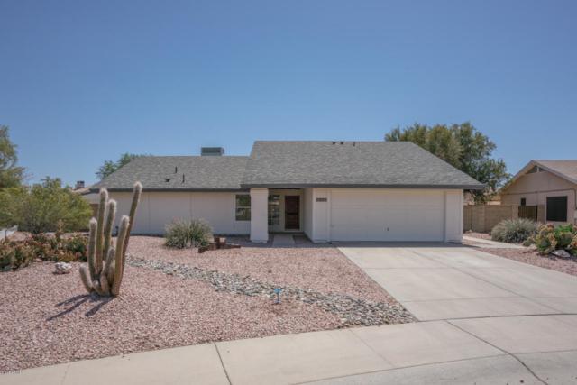 7825 W Redfield Road, Peoria, AZ 85381 (MLS #5756330) :: Devor Real Estate Associates