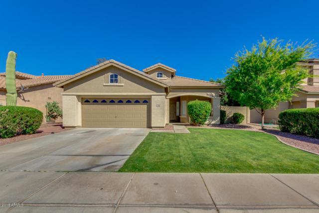20981 N 81ST Drive, Peoria, AZ 85382 (MLS #5756359) :: Devor Real Estate Associates