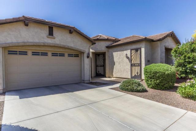 20156 N 259th Avenue, Buckeye, AZ 85396 (MLS #5756373) :: Devor Real Estate Associates