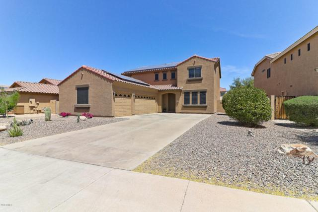 12489 S 175TH Avenue, Goodyear, AZ 85338 (MLS #5756391) :: Occasio Realty