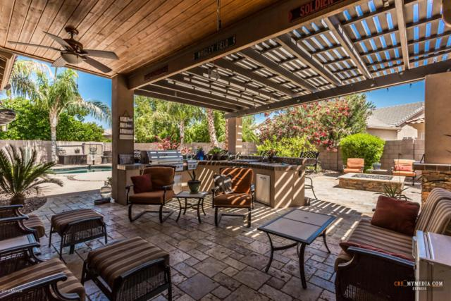 5115 S Pleasant Court, Chandler, AZ 85248 (MLS #5756433) :: Occasio Realty