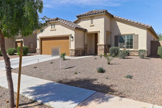 27278 N 175TH Drive, Surprise, AZ 85387 (MLS #5756437) :: The Daniel Montez Real Estate Group