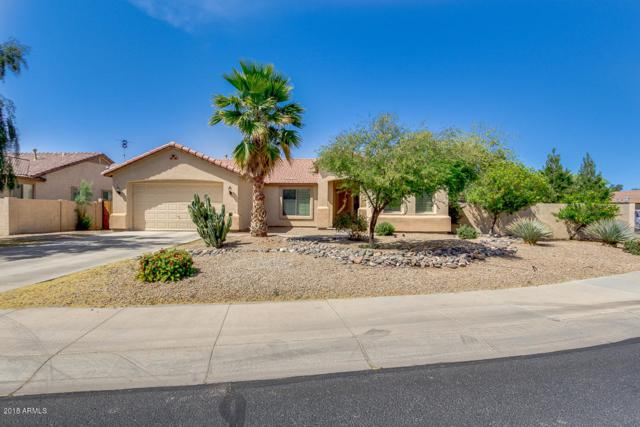 15016 W Roma Avenue, Goodyear, AZ 85395 (MLS #5756443) :: Occasio Realty