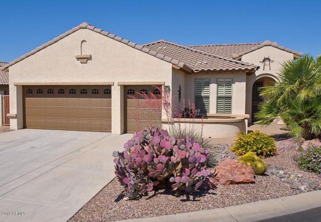 4056 N 161ST Drive, Goodyear, AZ 85395 (MLS #5756449) :: Occasio Realty