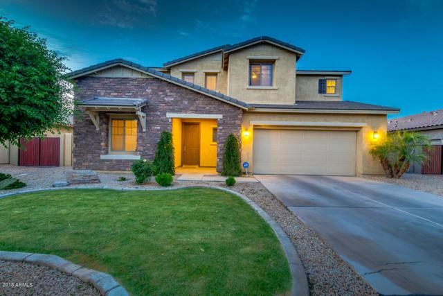 3392 E Zion Way, Chandler, AZ 85249 (MLS #5756456) :: Occasio Realty