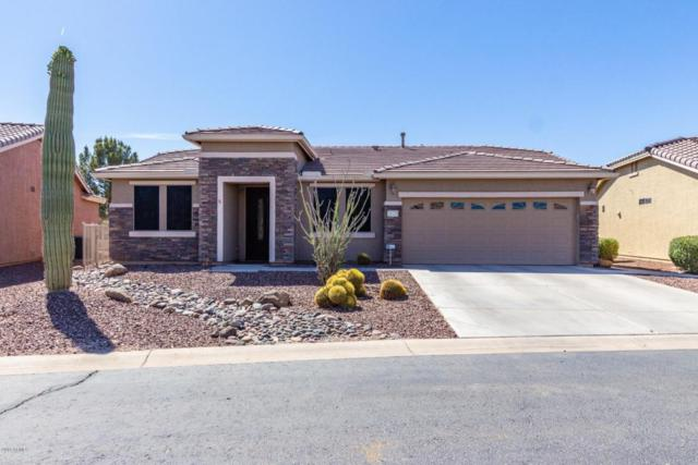 20135 N Leo Lane, Maricopa, AZ 85138 (MLS #5756462) :: The Daniel Montez Real Estate Group