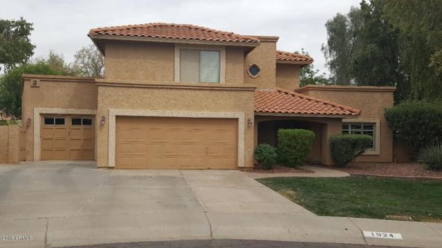 1924 E Palomino Drive, Tempe, AZ 85284 (MLS #5756471) :: The Daniel Montez Real Estate Group