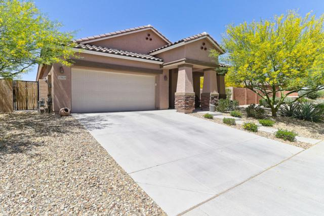 17859 W Desert Wind Drive, Goodyear, AZ 85338 (MLS #5756483) :: Occasio Realty