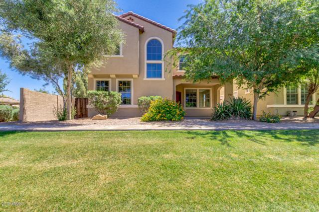 2596 E Bart Street, Gilbert, AZ 85295 (MLS #5756500) :: The Daniel Montez Real Estate Group