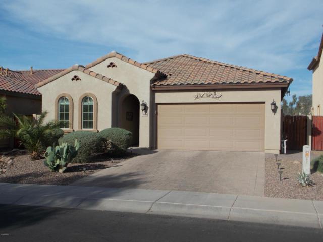 28474 N Broken Shale Drive, San Tan Valley, AZ 85143 (MLS #5756515) :: The Jesse Herfel Real Estate Group