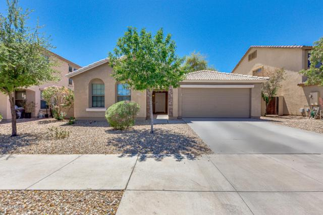 17243 W Hilton Avenue, Goodyear, AZ 85338 (MLS #5756520) :: Occasio Realty