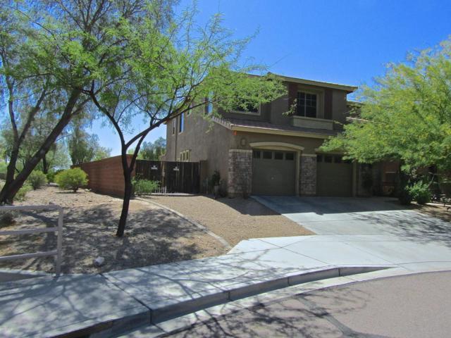 8405 W Tether Trail, Peoria, AZ 85383 (MLS #5756522) :: The Daniel Montez Real Estate Group