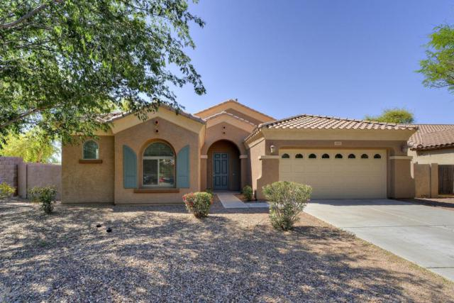 1455 E Walnut Road, Gilbert, AZ 85298 (MLS #5756524) :: The Daniel Montez Real Estate Group