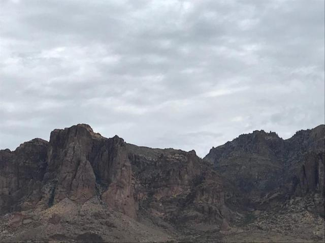 3500 N Val Vista Road, Apache Junction, AZ 85119 (MLS #5756530) :: Yost Realty Group at RE/MAX Casa Grande
