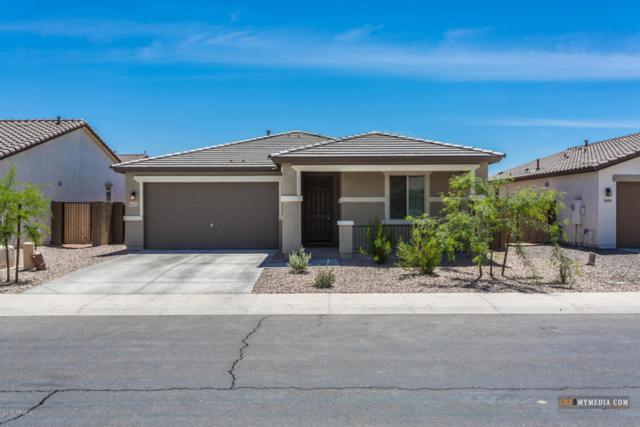42175 W Corvalis Lane, Maricopa, AZ 85138 (MLS #5756534) :: The Daniel Montez Real Estate Group