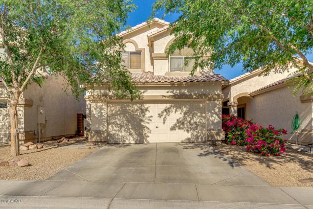 541 S Labelle, Mesa, AZ 85208 (MLS #5756586) :: Occasio Realty