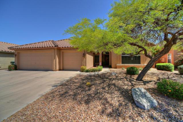 29209 N 46TH Place, Cave Creek, AZ 85331 (MLS #5756593) :: Lux Home Group at  Keller Williams Realty Phoenix