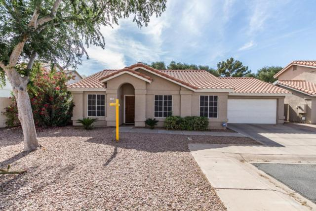 802 N Laveen Drive, Chandler, AZ 85226 (MLS #5756602) :: Occasio Realty