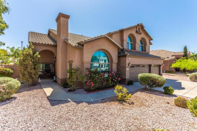 2749 S Birch Street, Gilbert, AZ 85295 (MLS #5756605) :: The Daniel Montez Real Estate Group