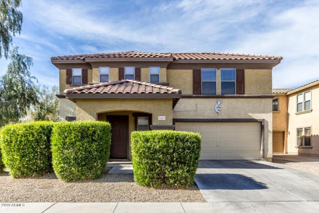 6464 W Ruth Avenue, Glendale, AZ 85302 (MLS #5756616) :: The Daniel Montez Real Estate Group