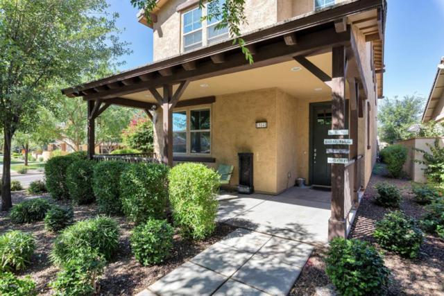 15141 W Alexandria Way, Surprise, AZ 85379 (MLS #5756624) :: The Daniel Montez Real Estate Group