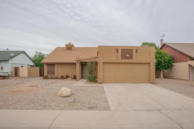7228 W Krall Street, Glendale, AZ 85303 (MLS #5756658) :: Essential Properties, Inc.