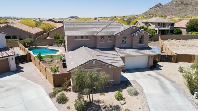8295 W Whitehorn Trail, Peoria, AZ 85383 (MLS #5756672) :: The Laughton Team