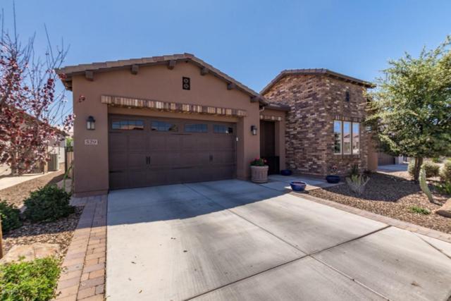 529 E Vesper Trail, San Tan Valley, AZ 85140 (MLS #5756676) :: The Jesse Herfel Real Estate Group