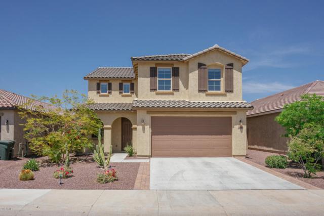 11924 W Carlota Lane, Sun City, AZ 85373 (MLS #5756687) :: Desert Home Premier