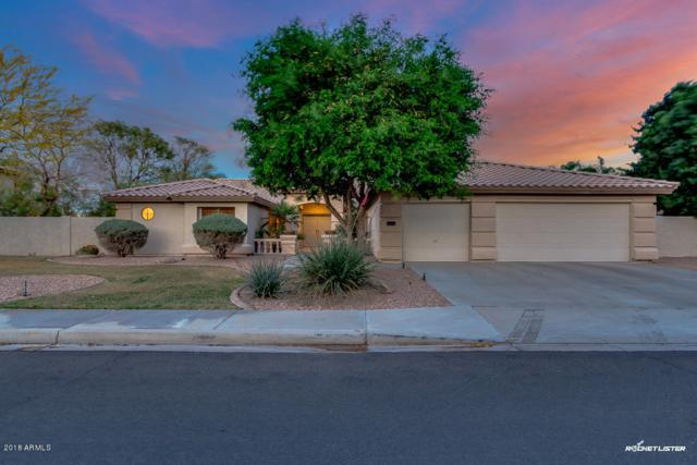 23515 N 81ST Drive, Peoria, AZ 85383 (MLS #5756703) :: Occasio Realty