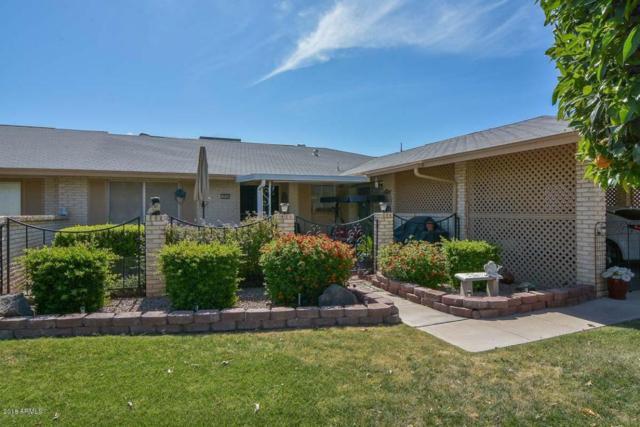 9733 N 105TH Drive, Sun City, AZ 85351 (MLS #5756706) :: Desert Home Premier