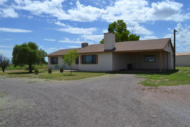 7010 N Mcbride Road, McNeal, AZ 85617 (MLS #5756750) :: Kortright Group - West USA Realty