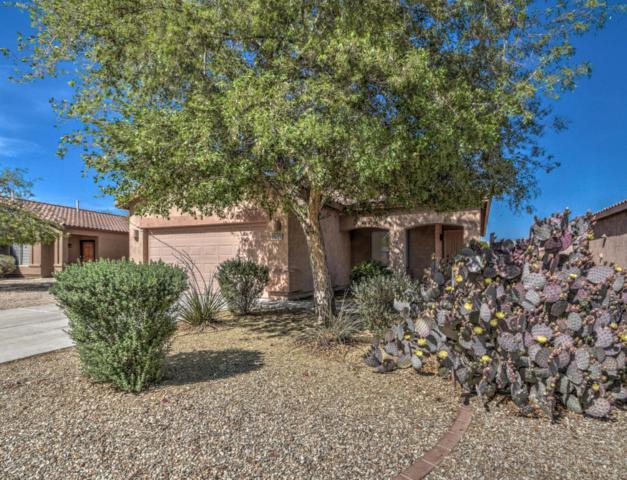 30237 N Royal Oak Way, San Tan Valley, AZ 85143 (MLS #5756752) :: The Jesse Herfel Real Estate Group