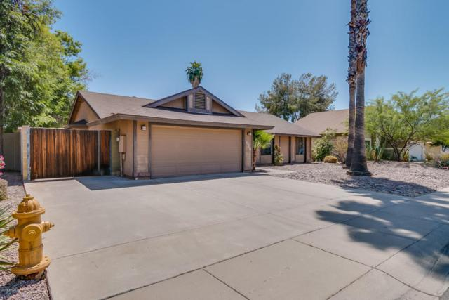 1629 N Longmore Street, Chandler, AZ 85224 (MLS #5756757) :: The Jesse Herfel Real Estate Group