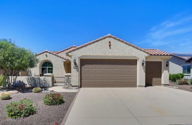 21500 N 262ND Lane, Buckeye, AZ 85396 (MLS #5756770) :: Desert Home Premier