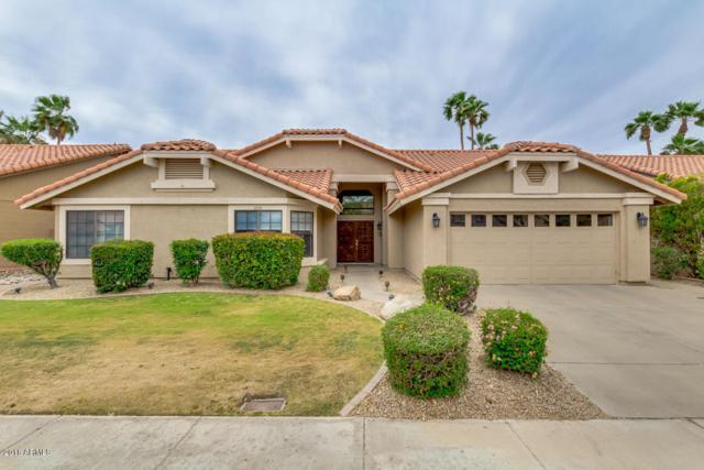 6951 W Kimberly Way, Glendale, AZ 85308 (MLS #5756772) :: Essential Properties, Inc.