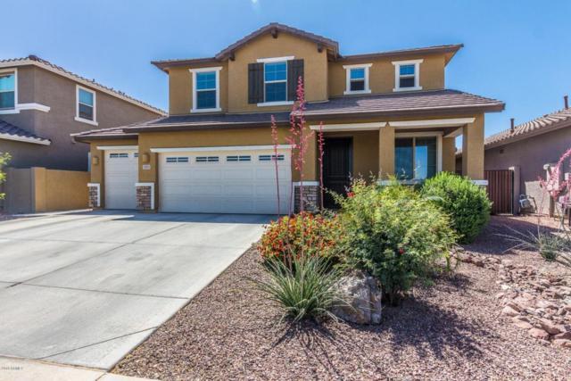3501 E Apricot Lane, Gilbert, AZ 85298 (MLS #5756780) :: Occasio Realty