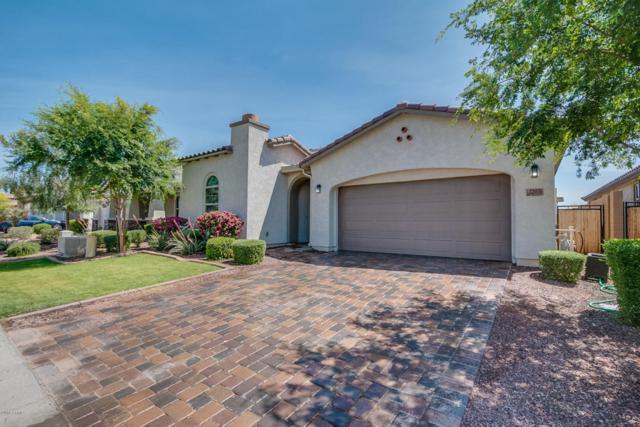 22031 N 97TH Drive, Peoria, AZ 85383 (MLS #5756791) :: The Laughton Team