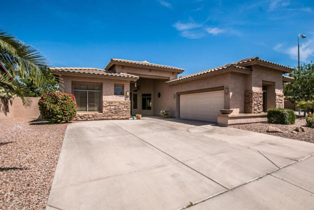 310 W Locust Drive, Chandler, AZ 85248 (MLS #5756809) :: The Jesse Herfel Real Estate Group