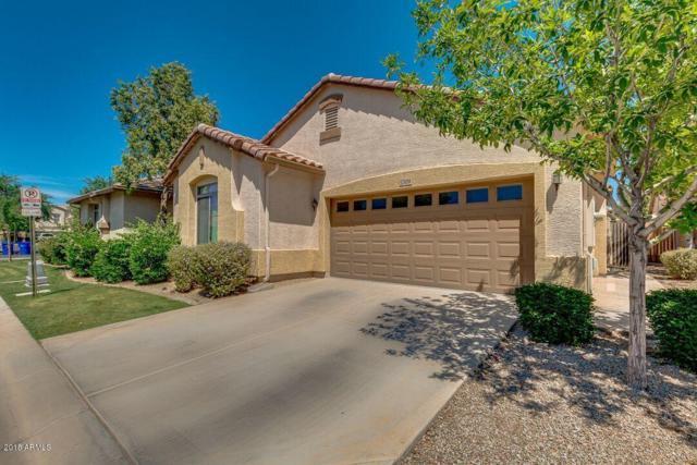 1309 E Thompson Way, Chandler, AZ 85286 (MLS #5756825) :: The Jesse Herfel Real Estate Group
