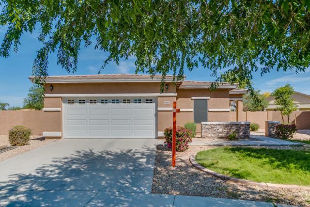 13862 W Ventura Street, Surprise, AZ 85379 (MLS #5756832) :: The Laughton Team