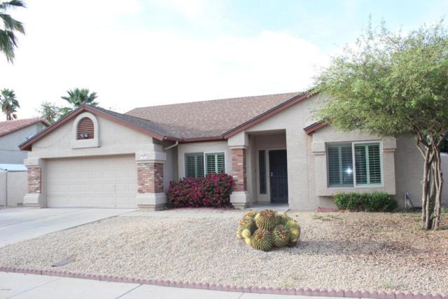 6128 W Beverly Lane, Glendale, AZ 85306 (MLS #5756835) :: Essential Properties, Inc.