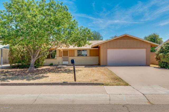 131 S Sahuaro Drive, Gilbert, AZ 85233 (MLS #5756849) :: Occasio Realty
