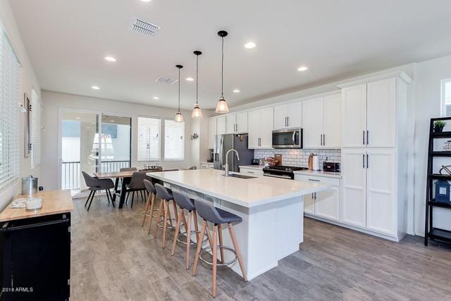 7057 W Corona Drive, Chandler, AZ 85226 (MLS #5756853) :: The Jesse Herfel Real Estate Group