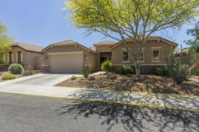 3427 W Warren Drive, Anthem, AZ 85086 (MLS #5756857) :: Essential Properties, Inc.